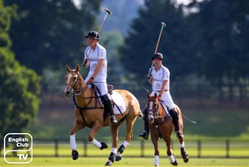 виды спорта в Англии