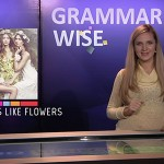 Grammar Wise. Test to Episode 3
