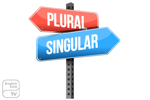 plural and singular nouns comprehensive expression