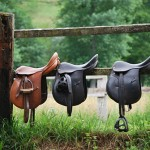 English Horse Riding and Their Cultural Impact