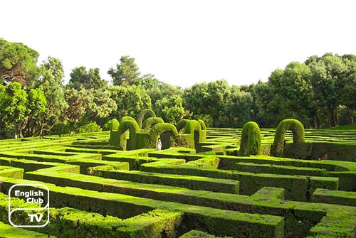 зеленый лабиринт