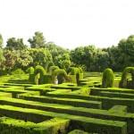 Зеленый лабиринт Лонглит