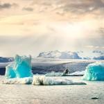 Британская Антарктическая территория