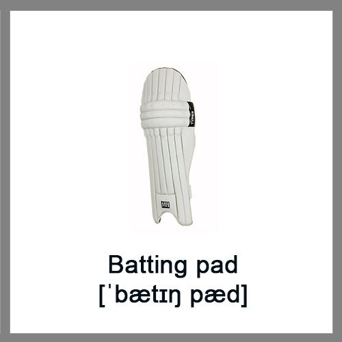 Batting-pad