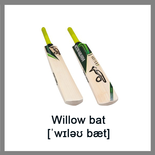 Willow-bat