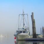 Английские рыбаки — как ловить рыбу в Англии законно